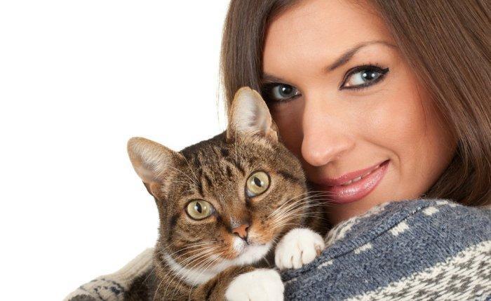 Аллергия на кошек - симптомы проявления у взрослых и детей 49