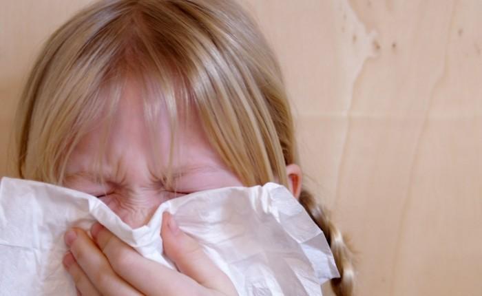 Аллергия на кошку: развитие, симптомы и лечения