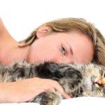 Гипоаллергенные породы кошек с фотографиями –  для людей с аллергией