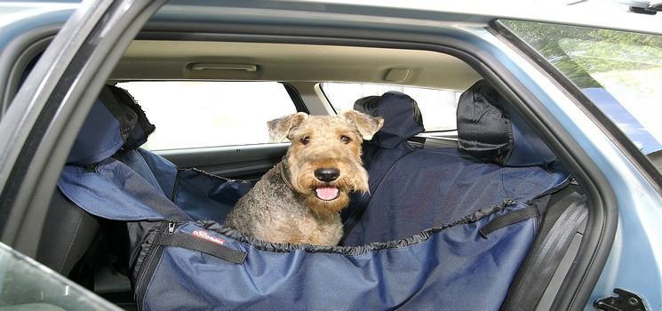 Заказать переноски и автогамаки для собак в интернет-магазине