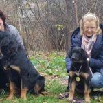 Как принято содержать животных в Германии